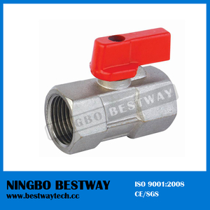 China Mini Ball Valve Fast Supplier (BW-B104)