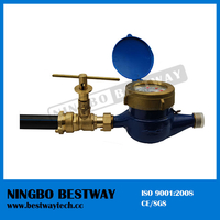 Water Meter with Brass Lockable Ball Valve (BW-L35)