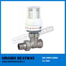 High Performance New Electric Radiator Valve (BW-R04)
