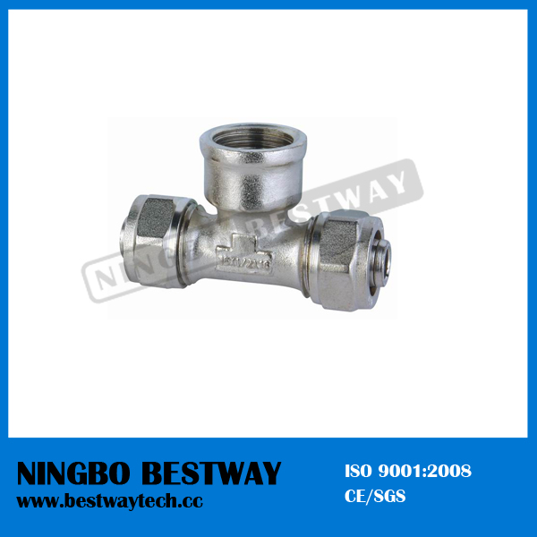 Best Perfomance Brass Compression Pipe Fitting (BW-409)