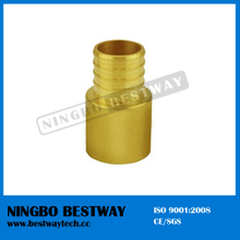 Ningbo Bestway Best Quality Pex Barbed Sw Adaptors