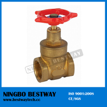 4 Inch Gate Valve for Water Meter (BW-G03)