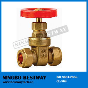 Brass Manual Slide Pressure Gate Valve (BW-G11)