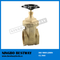 Passed SGS test new arrival gate valve weight (BW-LFG01)