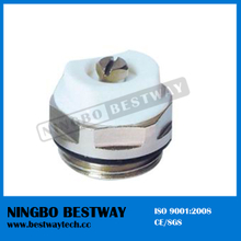 High Quality Air Vent Valve (BW-R10)