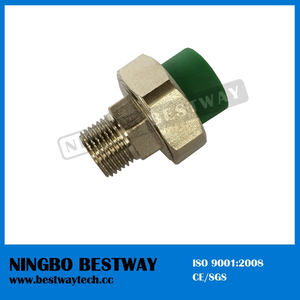 DIN8077 Brass Male Threaded PPR Union