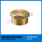 Brass Pipe Fitting Manufacturer (BW-632)