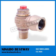 Economical Copper Swivel Ferrule (BW-F09)
