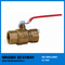 Best Quality Bronze Ball Valve Hot Sale (BW-Q02)