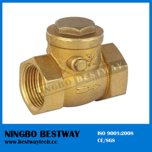 Best Quality Check Valve Hot Sale (BW-C01)