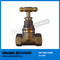 Hot Sale Gunmetal Stop Cock Valve Fast Supplier (BW-Q15)