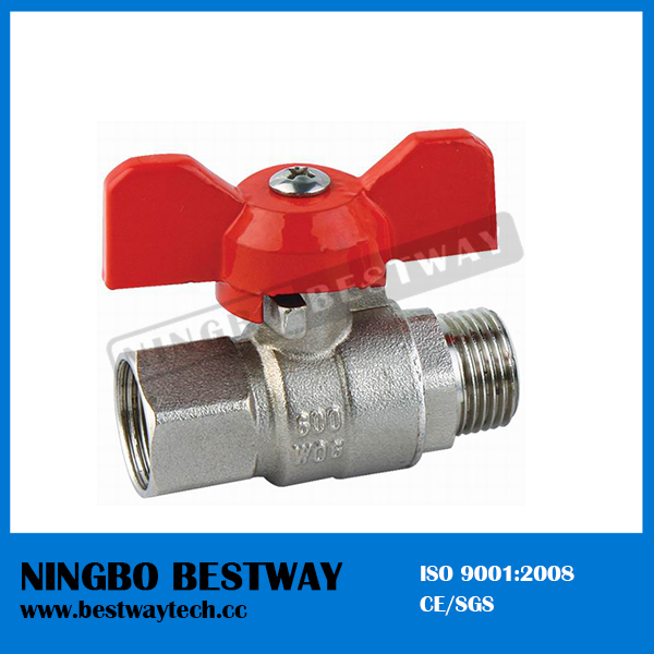 Economical T Handle Ball Valve (BW-B50)