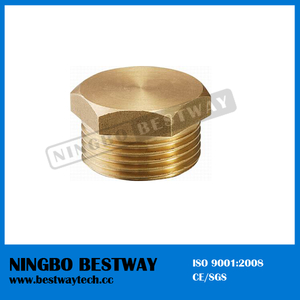 Brass Pipe Reducing Nipple Fitting Prices (BW-632)