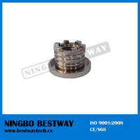 Hot Sale Brass Insert Nut Fast Supplier (BW-842)
