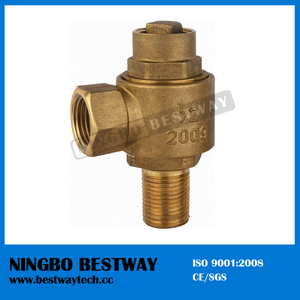 Economical Bronze Check Ferrule Valve Factory (BW-Q09)