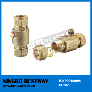 Ningbo Bestway Brass Check Valve with Strainer (BW-C12)