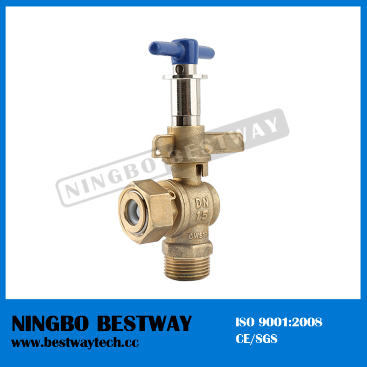 Short delivery date modern lockable ball valve water (BW-L38 with check valve)