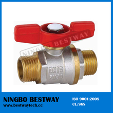 Male Ball Valve with T Handle (BW-B33)
