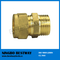 China Brass Pipe Fittings Hot Sale (BW-503)