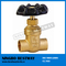 Hot Sale Brass Solid Gate Valve Supplier (BW-G08)