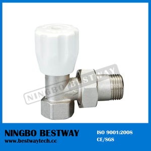 Brass Radiator Valve Caps Price (BW-R05)