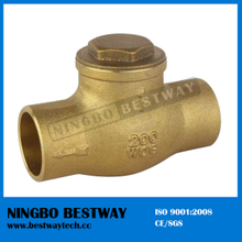 PVC Swing Check Valve for Water Meter Price (BW-C05)