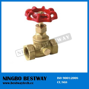 Hot Sale Brass Boiler Drain Valve with Good Quality (BW-S25)