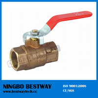 Hot Sale Bronze Ball Valve Producer (BW-Q01)