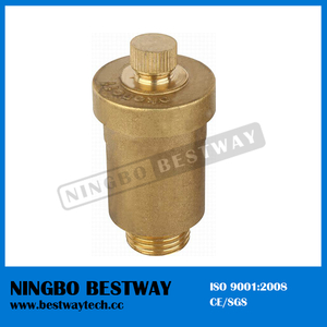 Solar Automatic Air Vent Valve Price (BW-R13)