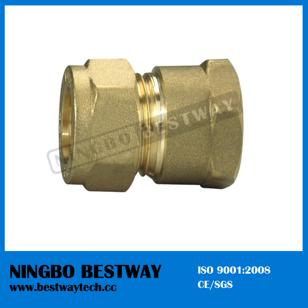 Brass Elbow Pipe Fitting Direct Factory (BW-510)