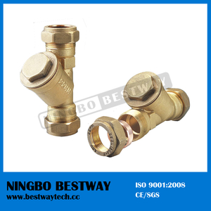 High Quality Brass Y Strainer at Reasonable Price (BW-C11)