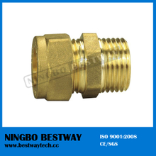 Brass Male and Female Pipe Fitting (BW-503)